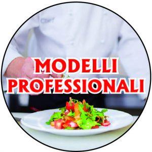 Modelli professionali